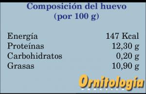 Composición del Huevo - www.ornitologiapractica.com