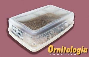 Caja de tenebrios vivos - www.ornitologiapractica.com